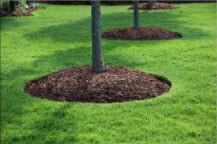 Mulching and more in Hagerstown MD